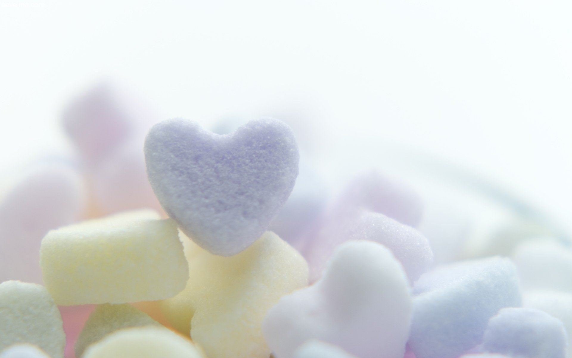 Cute St. Valentineu0027s Day Wallpapers | U2022 Sevelina Games For .