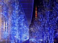 Christmas_wallpaper_christmas_Night_view_2014 2013