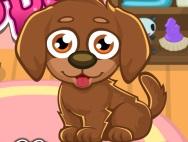 Bug-eyed puppy ツ
