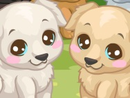 ๖ۣۜG Labrador puppy ๖ۣۜG