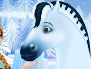 Anna's horse