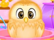Owl nestling